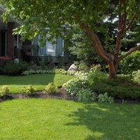 Mature lot garden design including garden pictures and flower garden ideas.