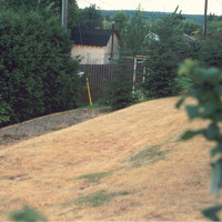 Photo of bungalow landscaping before Earthworm Landscaping provided a beautiful yard design.