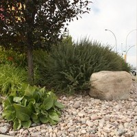 Commercial landscaping design project with several landscaping ideas
