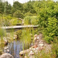 Acreage landscaping design for a large yard including flower garden ideas and water features.