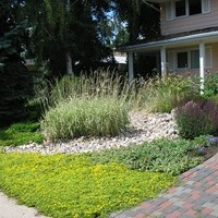 Front yard garden design ideas for a mature lot.