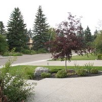Front yard garden design ideas for a mature lot including patio design and flower garden ideas.