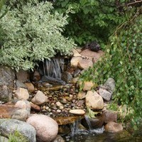 Garden pictures of the landscape design for a pie shaped lot including water features and flower garden ideas.